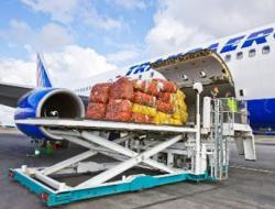 Авиаперевозки грузов из санкт-петербурга