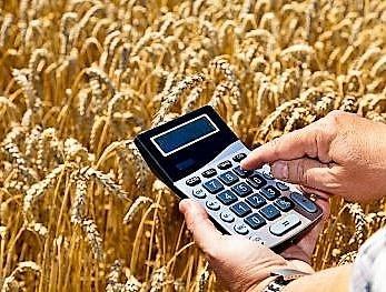 Саморегулирование идёт в поля – чиновники подумывают про СРО для зернового рынка