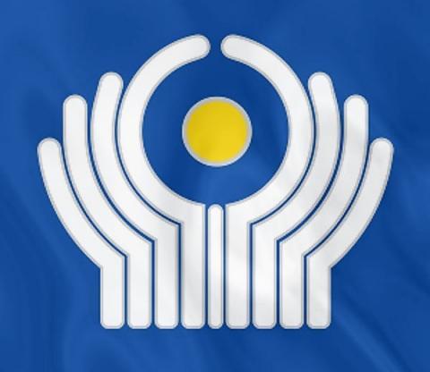 Структура Межгосударственного технического комитета «Строительство» поддержана экспертами СНГ