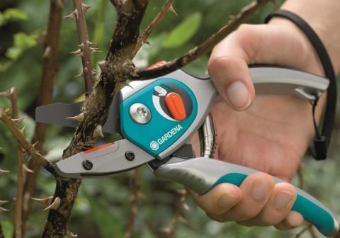 Садовый инструмент для обрезки деревьев
