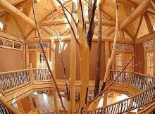Одноэтажная Россия. Почему комфортное жильё ближайших лет станет деревянным